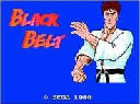 Playing: Black Belt